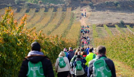 L'Associació de Dones de Torres de Segre va organitzar el passat 17 de novembre una caminada solidària per recaptar fons per la luita contra el càncer