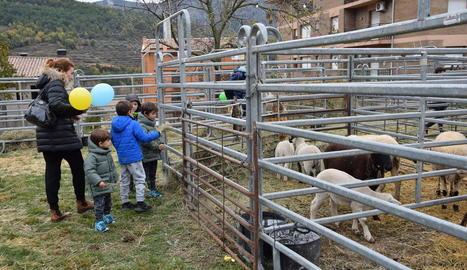 Imatge de nens visitant un dels corrals de la Fira de Sant Andreu d'Organyà.