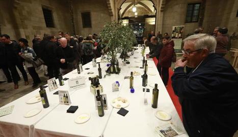 Alguns dels assistents a la presentació tastant els olis de la DO Garrigues.