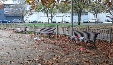 Vasos i botelles de plàstic es barrejaven amb les fulles al parc.