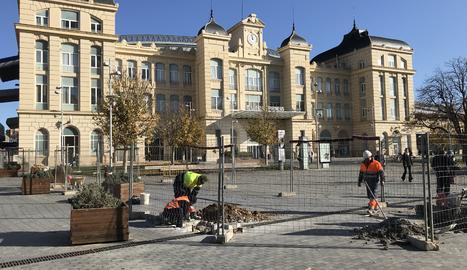 Planten més arbres davant de l'estació de trens de Lleida