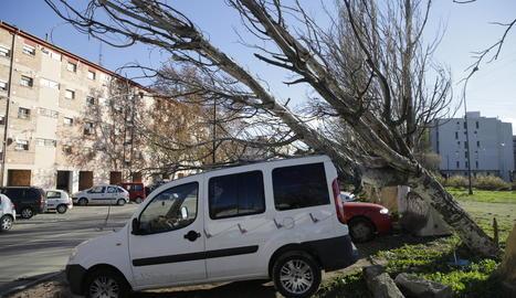 Imatge d'ahir d'Esterri d'Àneu després de les nevades de la nit de dijous a divendres.