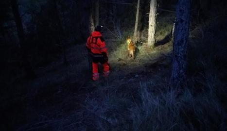 Un bomber i un gos de la unitat canina dels Bombers de la Ribagorça aragonesa, durant la recerca.