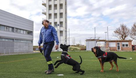 Ernest Capdevila, del Grup Caní de Recerca de Bombers de la Generalitat, amb Lali i Inde ahir al parc del cos a Lleida.