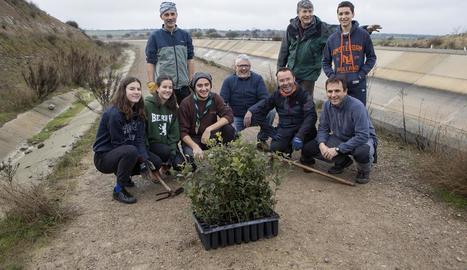 Alguns dels voluntaris que van participar ahir en la plantada d'alzines a Tàrrega.