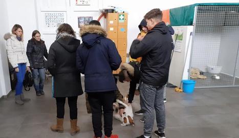 La visita d'alumnes al refugi.