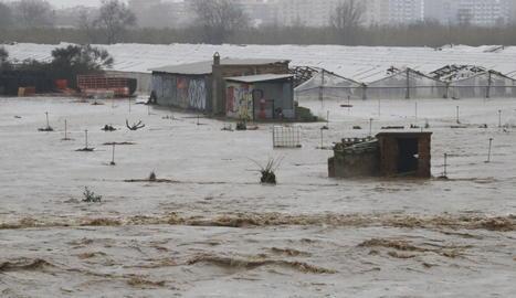 Conreus inundats a la Tordera, a Malgrat.