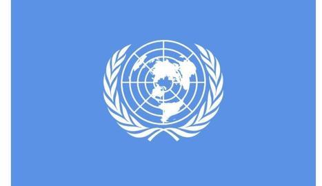 L'ONU 'renya' Espanya per la llibertat d'expressió