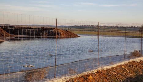 La bassa de la planta, ubicada en zona zepa, ahir.