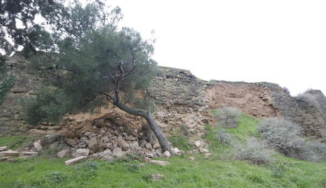 Les pedres despreses de la muralla de la Seu Vella.