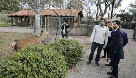 Un moment de la visita del conseller Calvet al Centre de Fauna de Vallcalent.