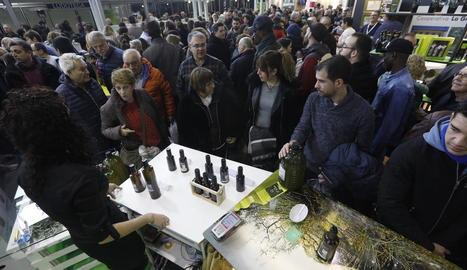 Visitants a l'edició anterior de la Fira de l'Oli celebrada a les Borges Blanques al gener.