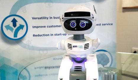 Presenten Misty, el robot lleidatà que assisteix gent gran