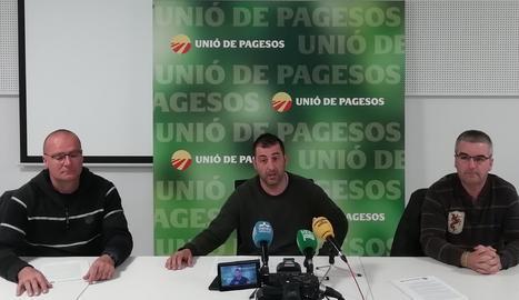 Jordi Pascual (centre), responsable de l'Oli d'Unió de Pagesos, amb Josep Maria Barrull (esquerra) i Marcelino Álvarez, de la sectorial, a la roda de premsa, aquest dijous, a Lleida.