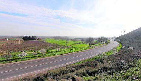 La zona on es planteja la macrocentral solar, en terrenys de Balaguer i de Térmens.