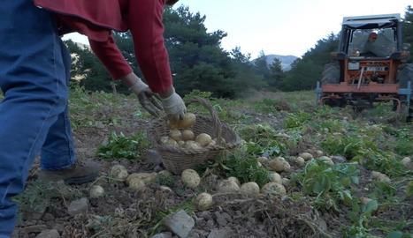 Una de les imatges que es podran veure al documental.