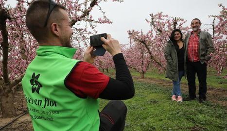 Els turistes arriben als camps en flor de Soses i la Granja d'Escarp