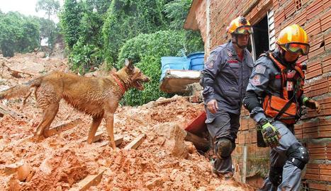 Les pluges deixen 31 morts a Sao Paulo