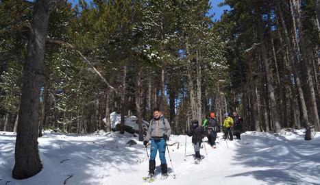 Un grup de 40 'instagramers' en una sortida amb raquetes pels boscos d'Aransa.