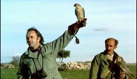 Félix amb el seu falcó pelegrí.