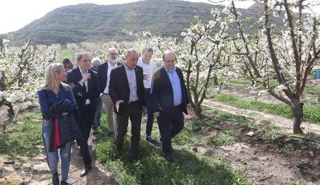 Iceta (dreta) va visitar ahir un camp de cirerers en flor d'Alcarràs.