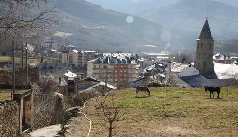Precarietat laboral també al Pallars