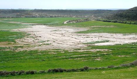 La salinització de les terres de cultiu es veu en algunes zones.