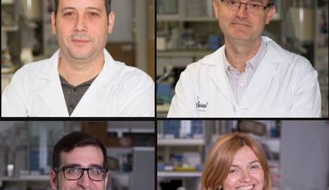 Els professionals que han presentat un mostra d'interès: José Manuel Valdivielso, Manuel Portero, Oriol Yuguero i Montse Gea