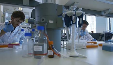 Un laboratori del centre tecnològic Eurecat.
