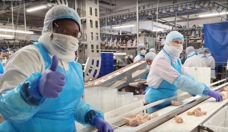 Treballadors de BonÀrea, als seus llocs en aquests dies amb mesures de seguretat reforçades.