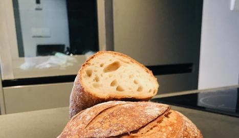 La reproducció dels pans i els 'youtubers'