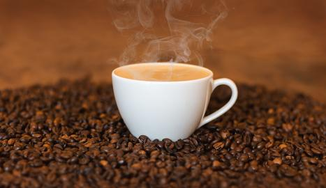Ni vostè ni jo som capaços de fer un cafè amb llet. Ni tan sols pagar-lo!