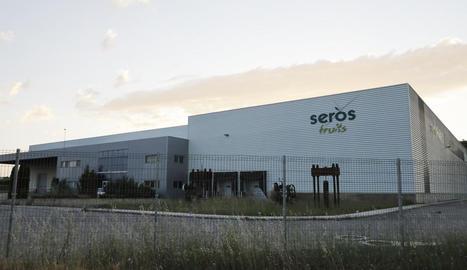 Fotografia de les instal·lacions de Seròs Fruits feta ahir.