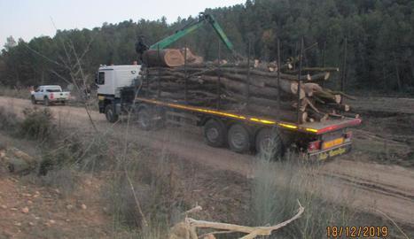 Un dels camions que la constructora utilitza per al transport dels arbres talats.