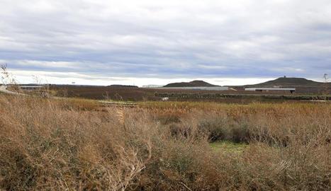 El polígon de Torreblanca-Quatre Pilans es preveu en aquesta zona.