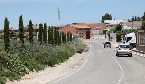 Planten prop de 140 arbres a la banqueta del canal a Arbeca