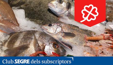 Peixos Savall ens ofereix un mar de productes frescos i de primera qualitat, ara també amb repartiment a Lleida, Balaguer i Tàrrega.