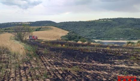 Vuit dotacions sufoquen un foc de vegetació a Os de Balaguer