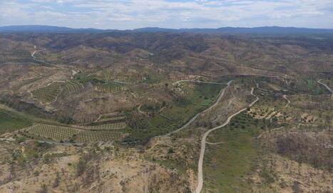 VIDEO La zona cremada per l'incendi a la Ribera d'Ebre i les Garrigues, un any després a vista de dron