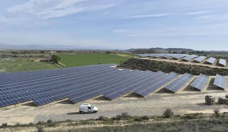 Panells solars instal·lats recentment al terme municipal d'Almacelles.