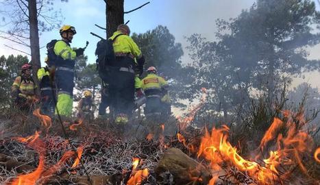 Un grup de bombers treballa en l'extinció d'un incendi.