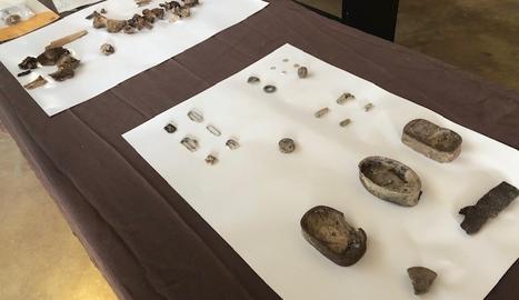 Restes trobades a les fosses del Cogul.