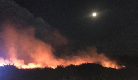 Vista de l'incendi dijous a la partida Pardinyes Altes.