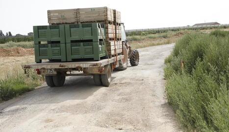 Un tractor amb remolc al camí Llombart amb palets lligats perquè els clots no els facin caure.