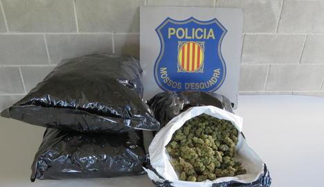 El detingut portava a sobre vuit quilos de cabdells de marihuana.