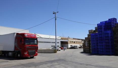 L'activitat a Arfon Fruits d'Aitona ahir era nul·la després de la decisió de Salut de suspendre l'activitat.
