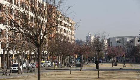 La rambla de Pardinyes és un dels carrers amb arbres morts per falta de reg, segons la Paeria.