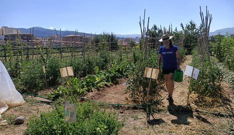 Una voluntària, conreant l'hort que l'associació Alba Jussà té a Tremp.