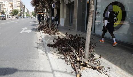 Branques d'arbres que van caure o que es van haver de tallar al carrer Balmes de Lleida.