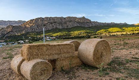 El tractor de palla als afores d'Oliana construït per l'agricultor Domènec Estany.
